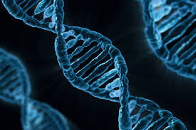 INA-106 Genética