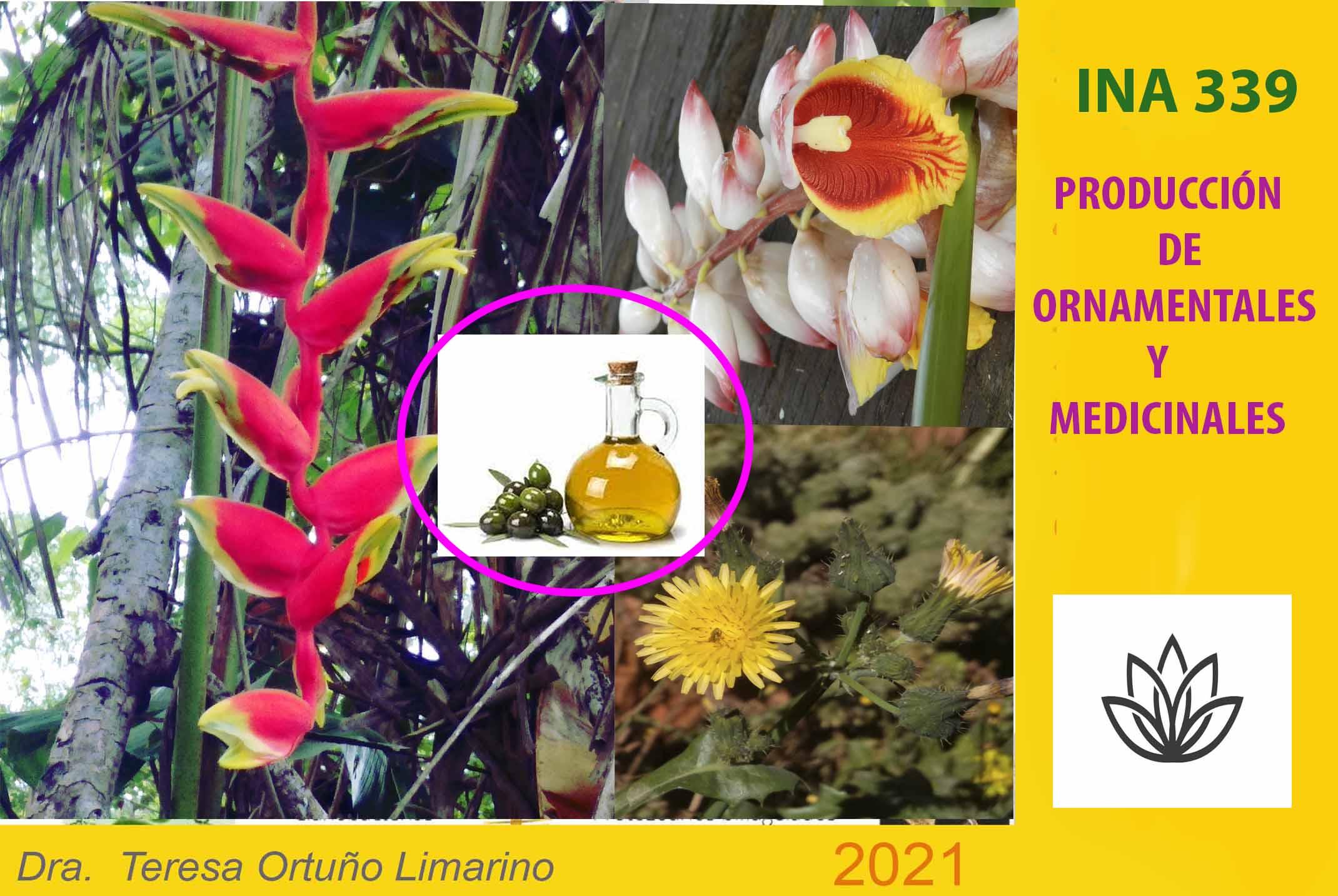 INA-339 Producción de Plantas Ornamentales y Medicinales